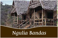 Ngulia Safari Camp.